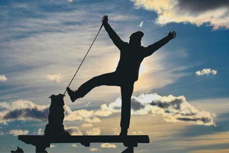 Svjetski dan zaštite životinja: Objavljen vodič za vlasnike pasa Šapicama po Primorsko-goranskoj županiji